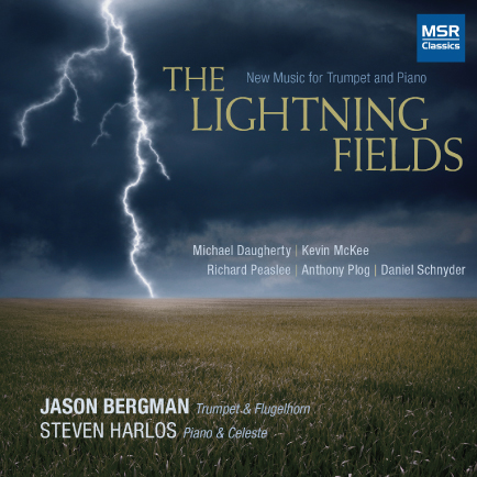 The Lightning Fields